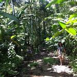 07 Viajefilos en Panama. Isla Bastimentos 23