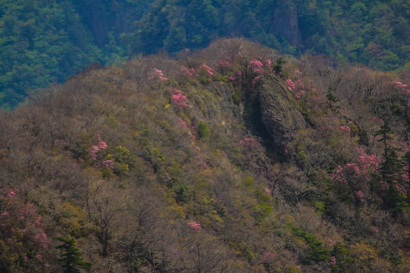 2014-05-06_02305_九州登山旅行.jpg