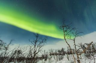 Auroras Boreales en Noruega-44 | by luisete