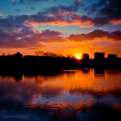 sunset sky reflection london water clouds colorful cityscape squareformat 365 365days 365project 365p julianalauletta