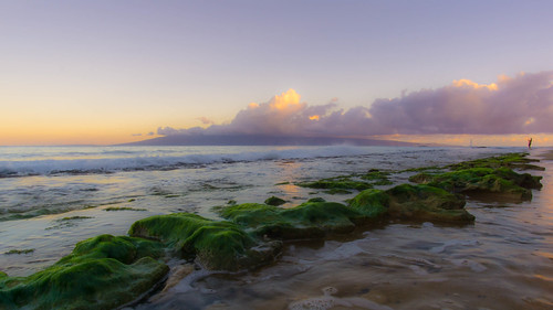 ocean morning beach sunrise hawaii sony maui a6000