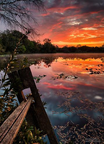 sunrise floridasunrise lakesunrise sunrisereflection