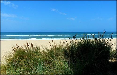beach australia victoria coastline ninetymilebeach lakesentrance