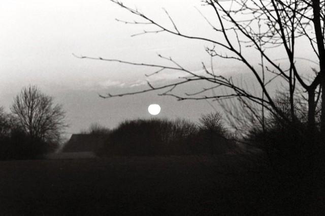 Sonnenaufgang/ Sunrise - I shot film