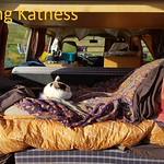 Camping Katness