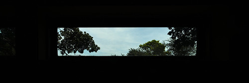 panorama tree plants outdoors window view sky clouds zeiss15mmf28distagon zeiss distagon1528ze distagont2815 leicasl