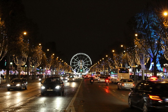 Paris 24.11.2014 019