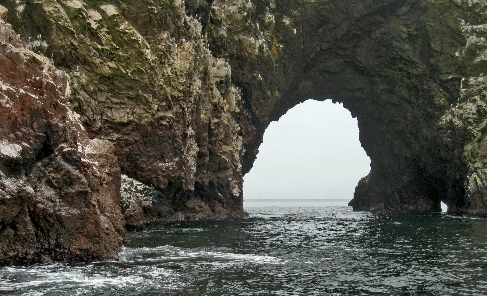 Islas Ballestas 129