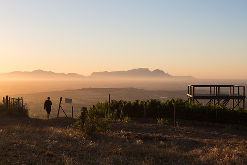 sunset landscape southafrica vineyard hiking tablemountain westerncape capepeninsula helderbergplaas helderbergfarm