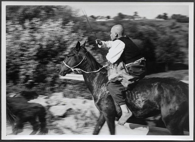 Archiv H788 Im Südlichen Wolga-Gebiet, WWII, 1940er