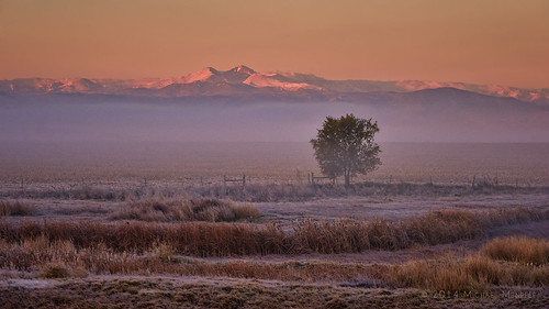 morning mist mountains misty fog sunrise landscape dawn cool nikon colorado warm frost hoarfrost farm farming foggy co layers longspeak agriculture plains frontrange hoar morn firstlight larimer d700 michaelmenefee