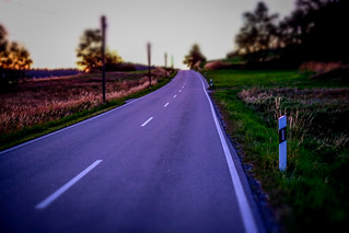 I am on the road to nowhere | by mripp