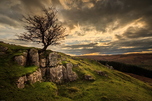 wales sun landscape sunset crick crickhowell nationalpark powys silhouette tree trees breconbeacons llangynidr mountain unitedkingdom gb
