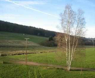 Nice landscape