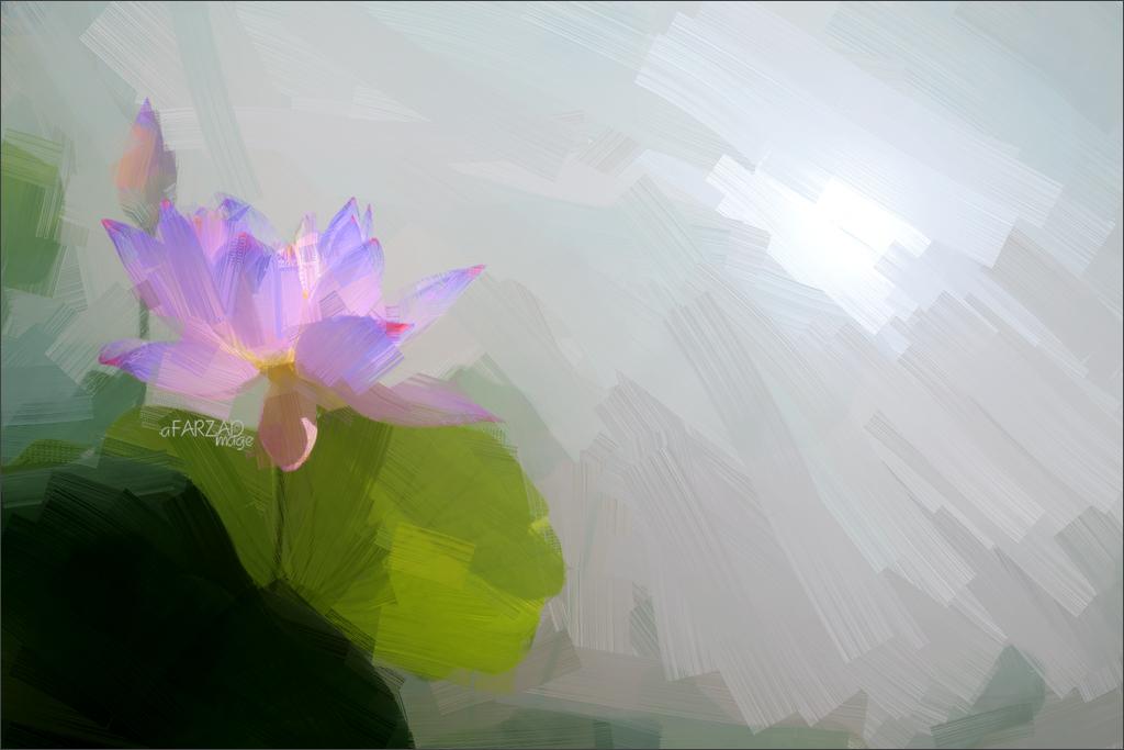 Blue Lotus Flower Oil Paintings Lotus Flower Oil Paintin Flickr
