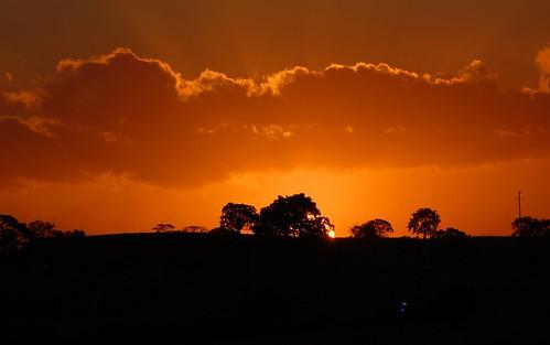 sunset sunsetlight horizon silhouettes australia winter backcreekvalley fernside
