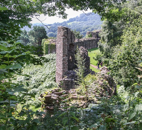 17july2016 17072016 18270 18270mm 18270mmf3563diiivcpzd 2016 beeston canon cheshire cheshiremerseyside dslr eos70d englishheritage explore flickr july middleages slr tamron castle explored fortification medieval photography stone tree view wood woodland