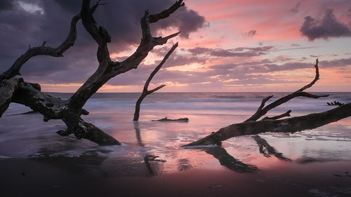boneyardbeach boneyardjourneys canon georgia jekyllisland summer summersolstice clouds coast color dawn driftwood landscape light mood morning nature reflection sand seascape shore storm sunrise tree water waves