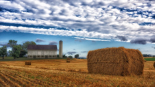 Farm | by Ted Van Pelt