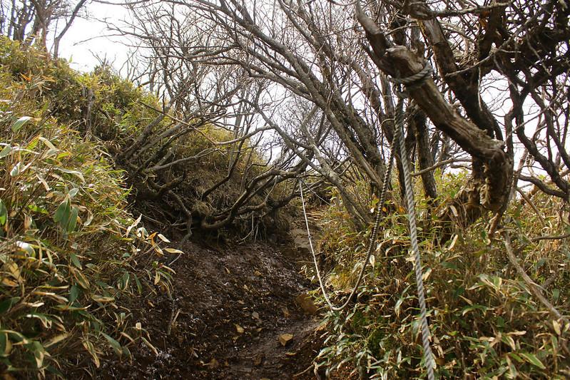 2014-05-06_02265_九州登山旅行.jpg