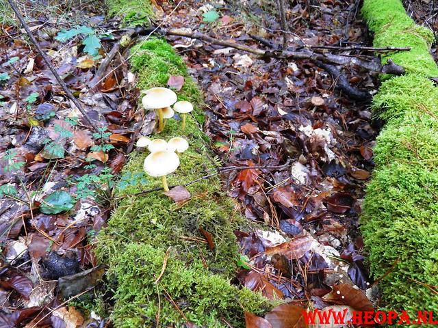 22-10-2011             Driebergen         26 km (69)