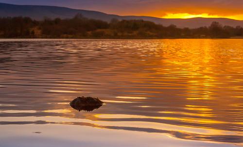 ireland sunset water ripples cavan leitrim