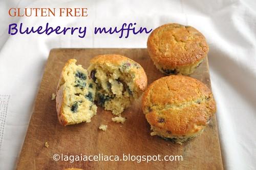 Gluten free blueberry muffin | by mammadaia