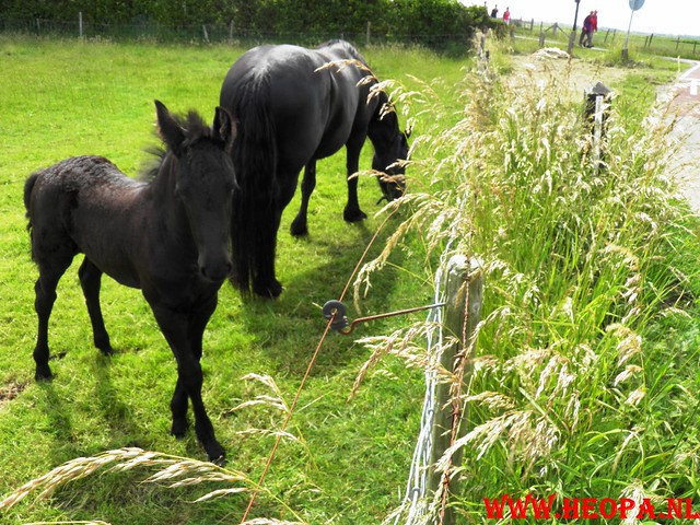 17-06-2011   Alkmaar 3e dag 25 km (40)