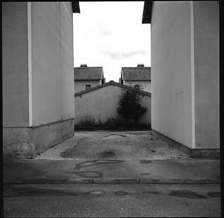 Day 65 _ But no, it's not a dead end, asshole ... | by Daniel Nowak