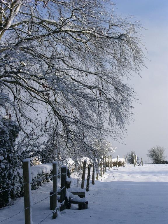 Near Warnborough