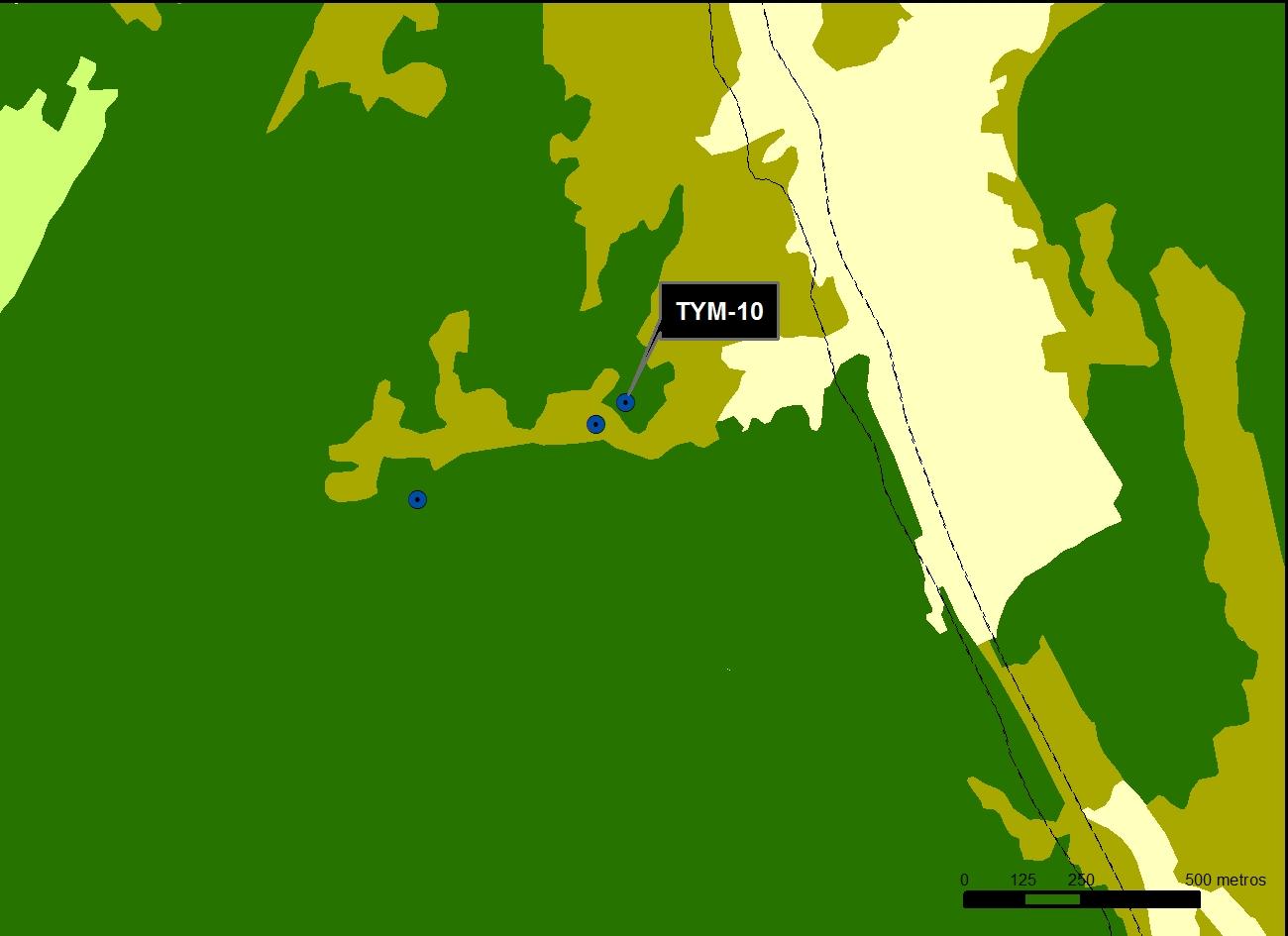TYM_10_M.V.LOZANO_CHORREADERO_MAP.VEG
