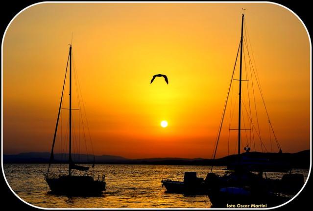 Il mare dell'Argentario ed il volo del gabbiano al sorgere del sole.