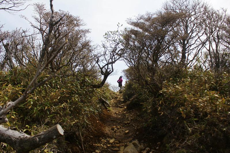 2014-05-06_02268_九州登山旅行.jpg