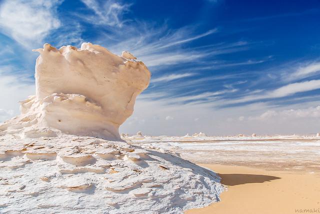 desert mushroom