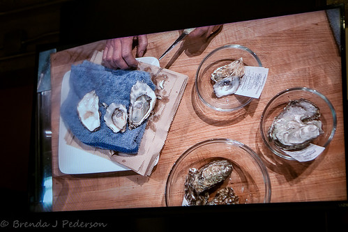 Talking Oysters | by Culinary Fool