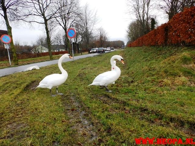 21-02-2015 Almeerdaagse 25,2 Km (33)