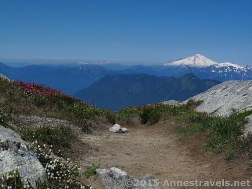 Mt. Baker from the Hidden Lake Pass, North Cascades National Park, Washington