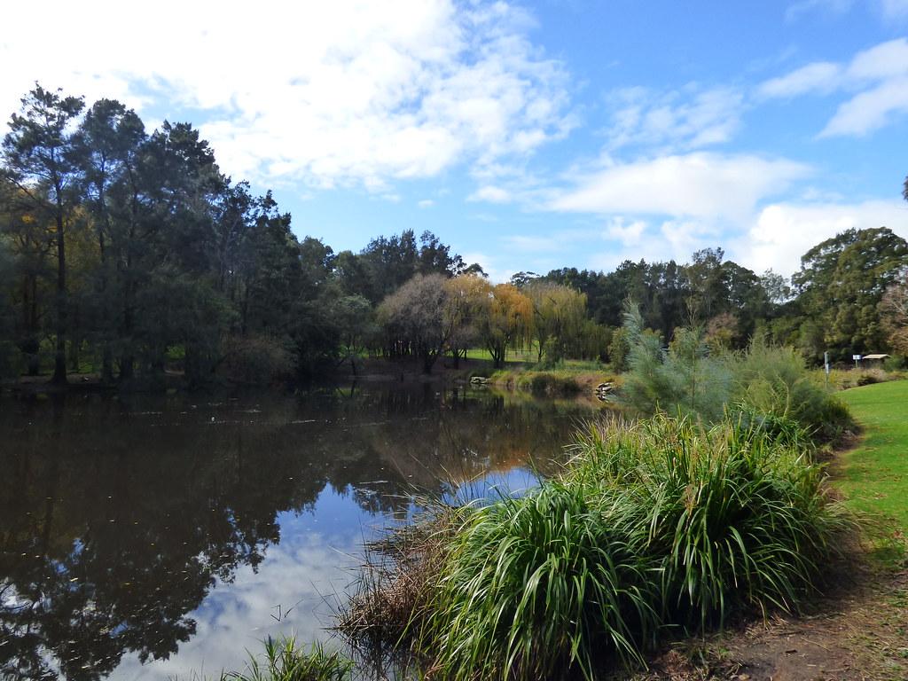 H V Evatt Reserve, Lugarno, NSW 9 July 2016