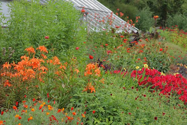 Discover the Walled Garden