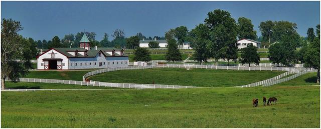 Horse farm near Georgetown KY, (HFF)