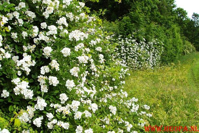 2010-06-19          4 Plus Alkmaar        4e dag 25 Km   (31)