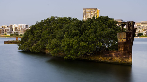 sunset water collier lowlight ss sydney shipwreck forsaken mangroves rhodes homebushbay oldship ayrfield floatingforest nikond7000 twittertuesday