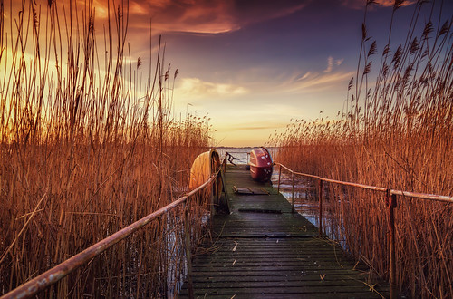 usedom | by signaphoto