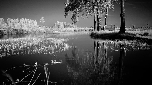 2 Bed lake side processed bw FUJI | by Matt Jones (Krasang)