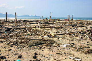 Damage from the Asian Tsunami of 26 December 2004 | by Asian Development Bank