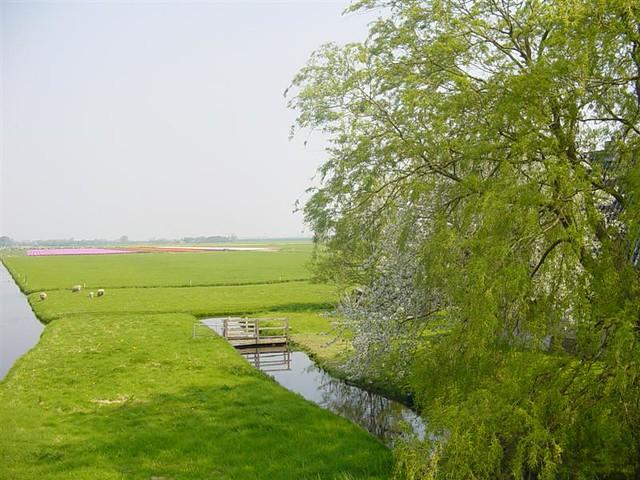 Hoorn          07-05-2006 30Km  (23)