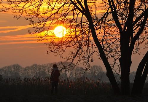 trees holland nature sunrise dawn early nevel nebel nederland natuur boom aurora holanda paysbas zon niebla baum brouillard veluwe daybreak silhouet zonlicht gelderland sfeer hattem wandelaar persoon zonsopkomst leverdusoleil ochtendstond solopgang ochtendzon golddragon nikond90 ochtengloren wilmahw61 wilmawesterhoud