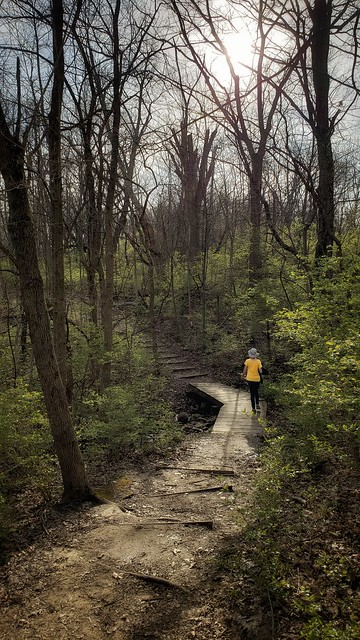 At the Narrows Reserve, Greene County, Ohio