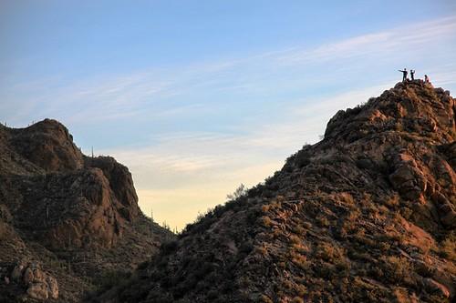 sunset arizona mountain desert tucson saguaro desertm