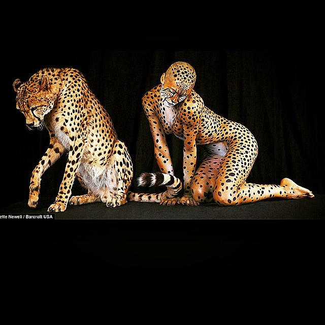 Scottie Armonie is seen in this picture being a cheetah next to a cheetah the cheetah is not real that was photoshopped in but lets explain the many things she does - you guys heard her yesterday explain that she had gotten the option to pick a crown her